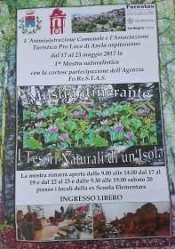 """MOSTRA ITINERANTE AD ANELA – """"I TESORI NATURALI DI UN'ISOLA"""""""